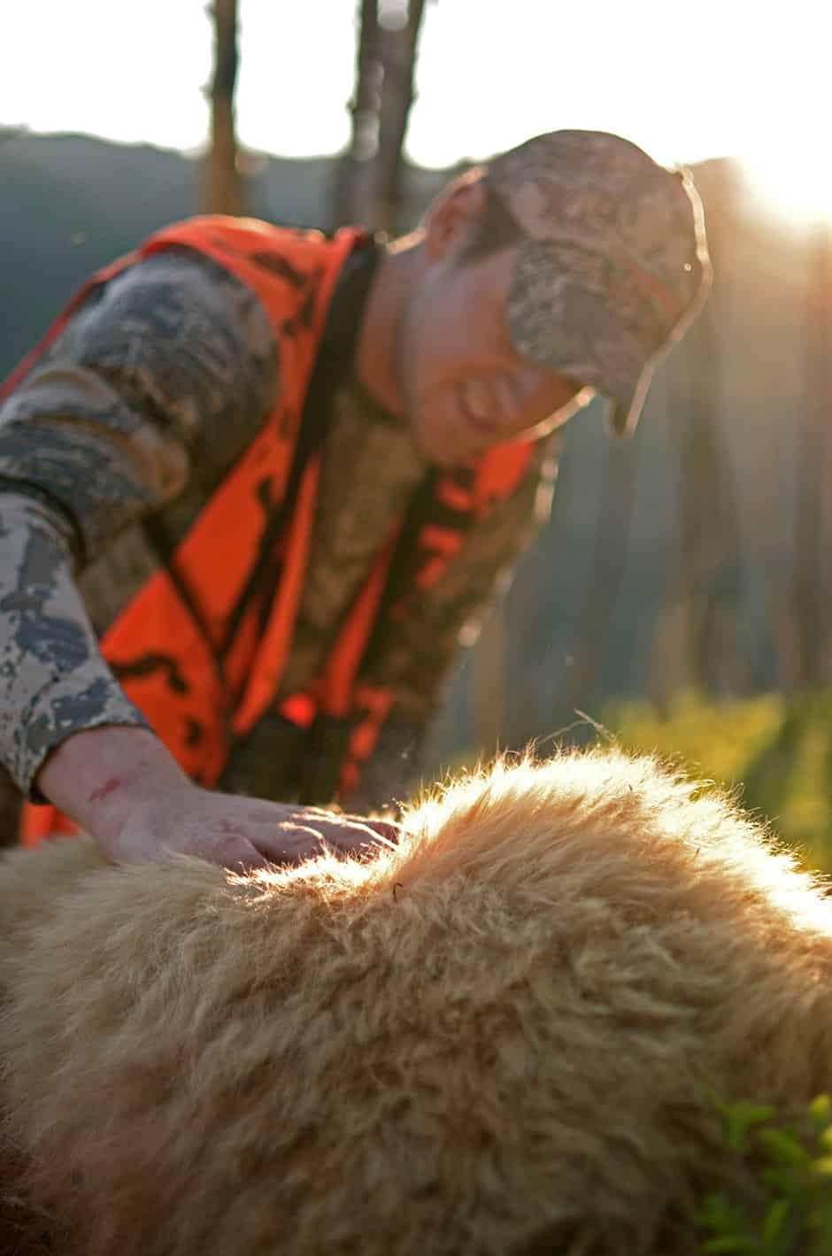 Bear-Fur.jpg?mtime=20170626090608#asset:2779
