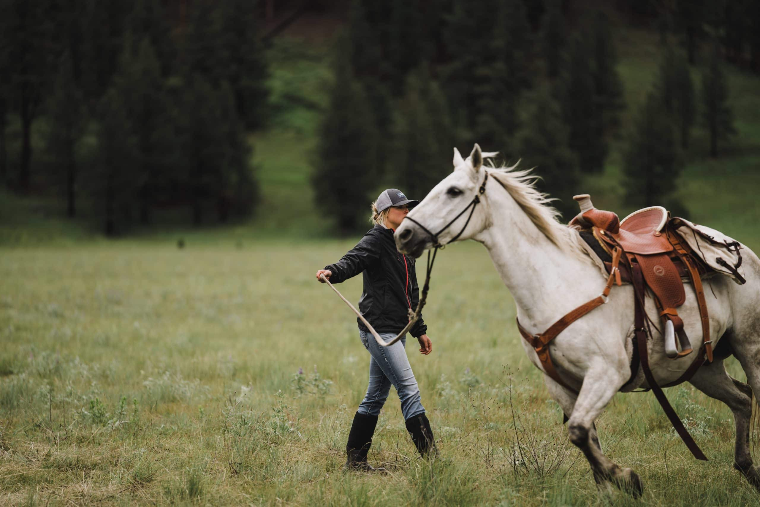 A shed hunter leads her excited horse around the grass before the start of the shed hunt.