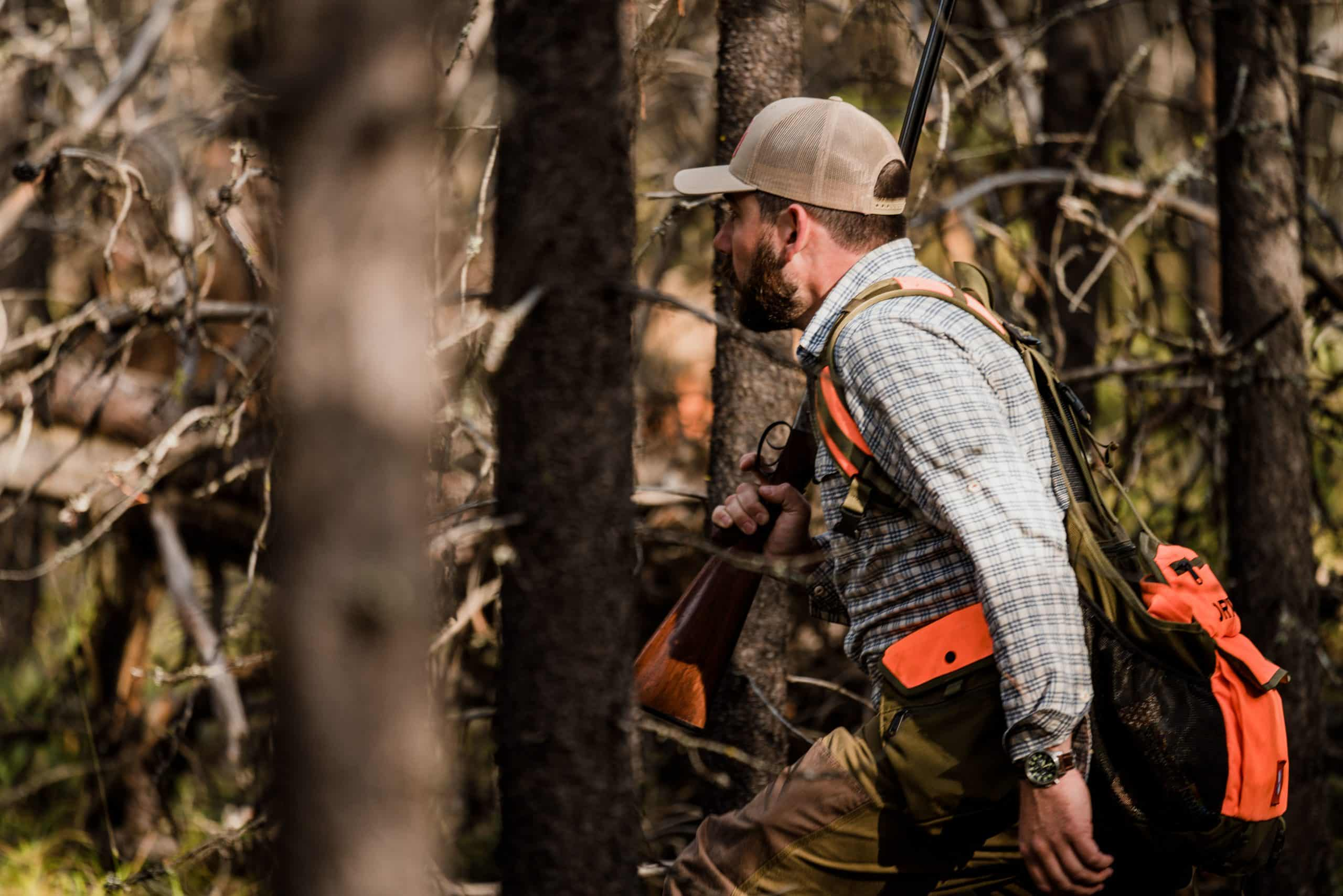 A hunter walks through thick woods while grouse hunting in northwest Montana.