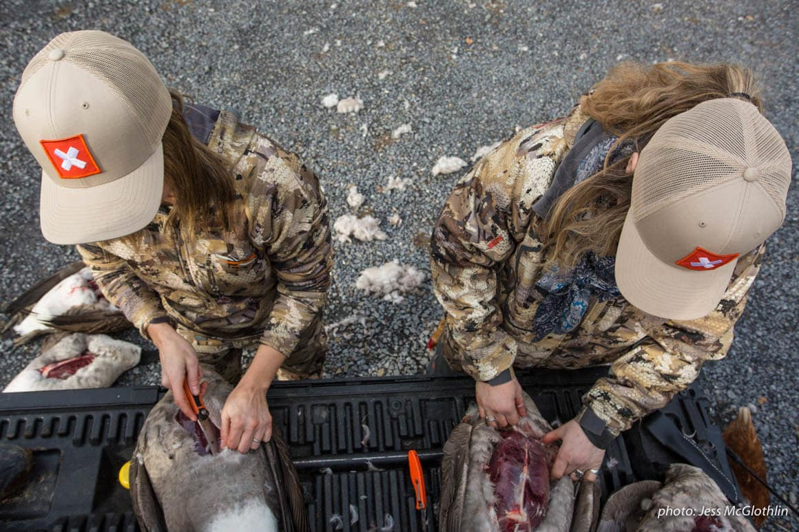 Two female hunters breast out geese on the tailgate of a truck.
