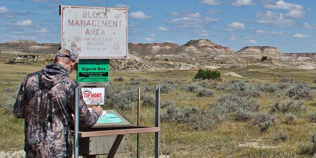 eastern Montana antelope archery hunt