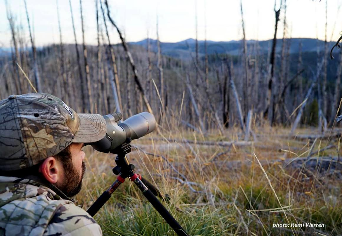 Man glasses for elk in a burn area in the mountains.