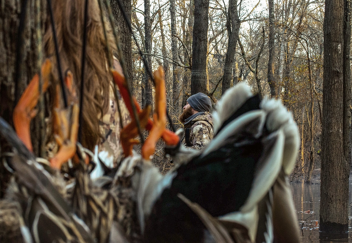 Mallards with orange feet hung while hunting with a hunter in waterfowl camo in the background.