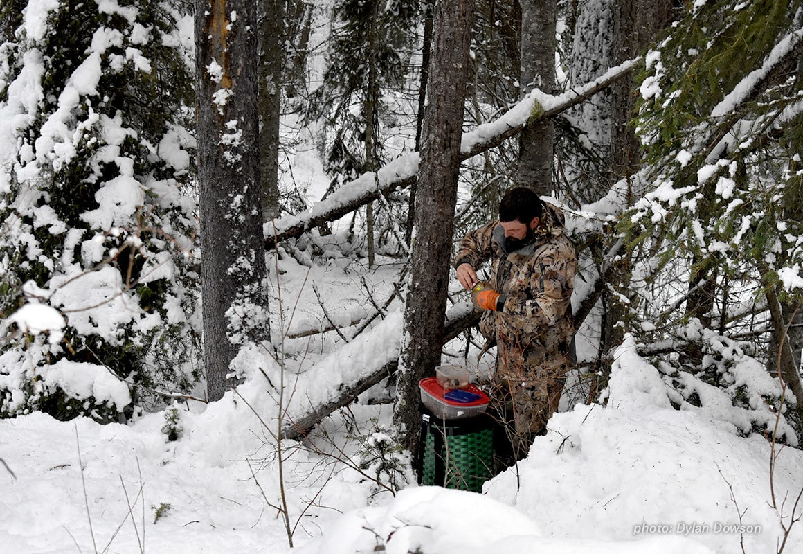 Man prepares and baits hunting trap in the snow.