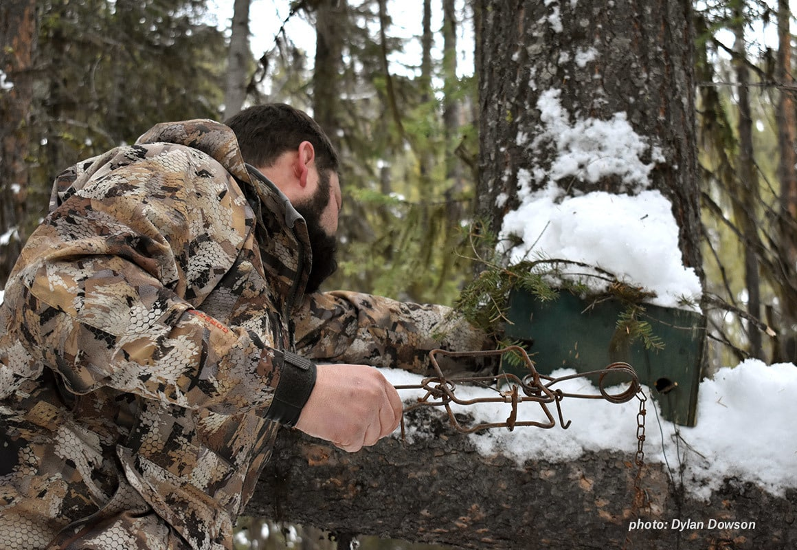 Man setting hunting traps in the snow in Montana.