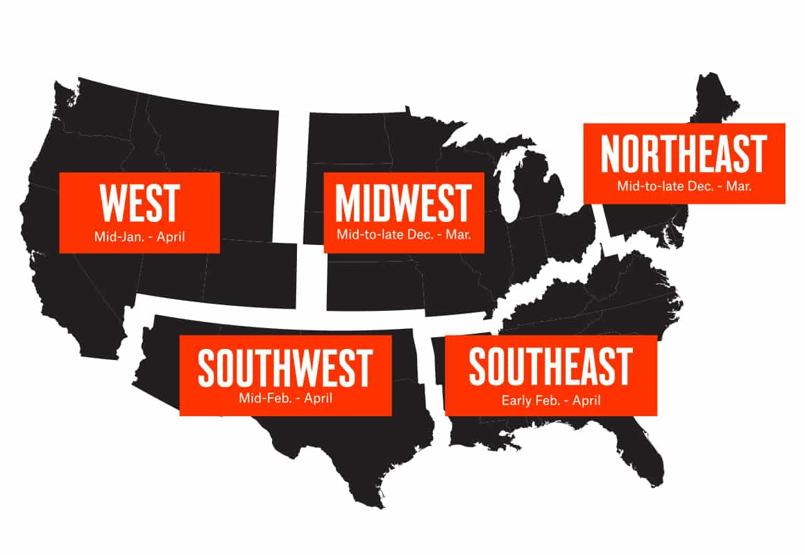 Infographic of American broken out by region showing the best shed hunting dates.