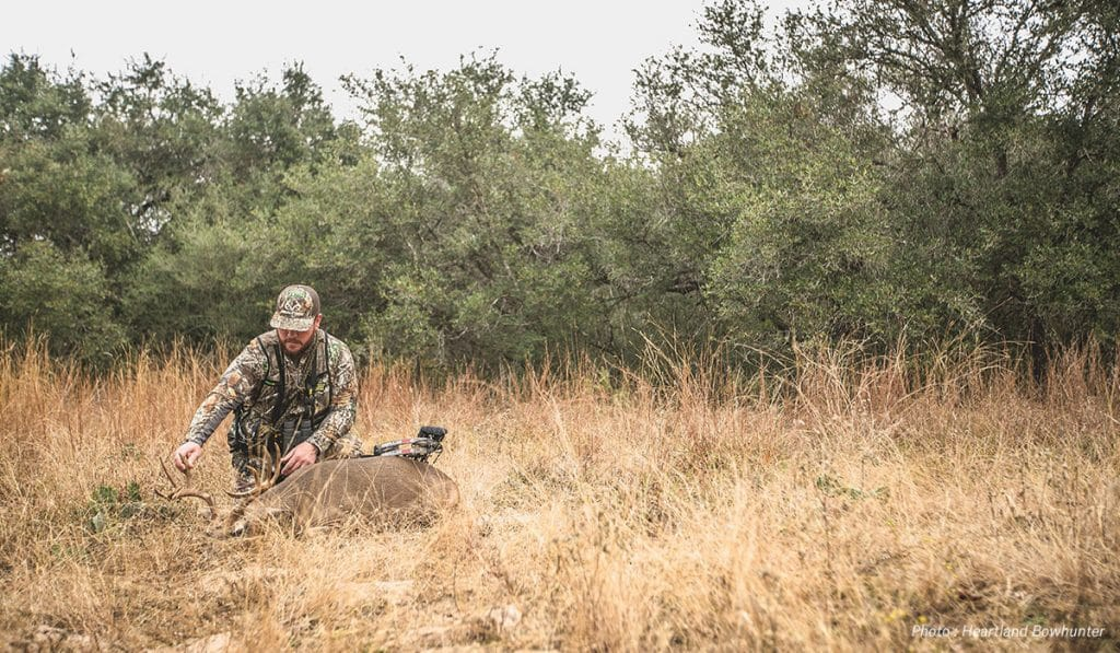 Hunting the South's Whitetail Deer Rut