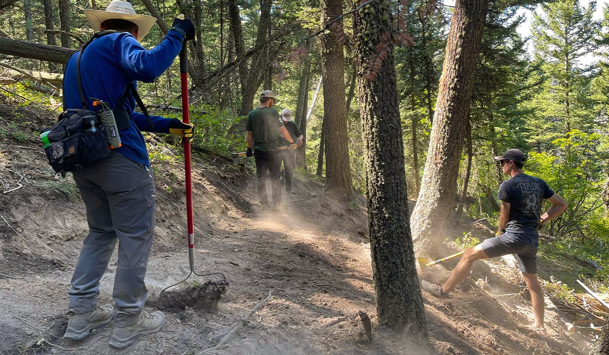 Volunteers using tools to build a trail