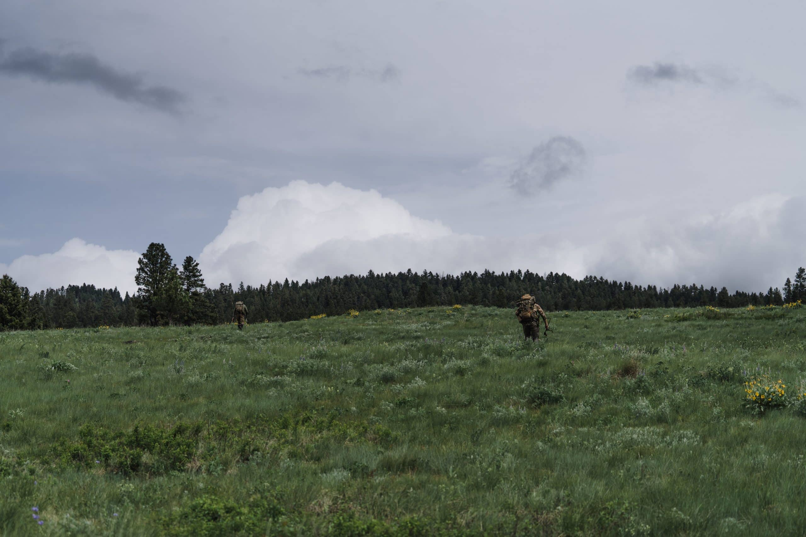 Two hunters run uphill on the Blackfoot-Clearwater WMA at the start of the shed hunt.