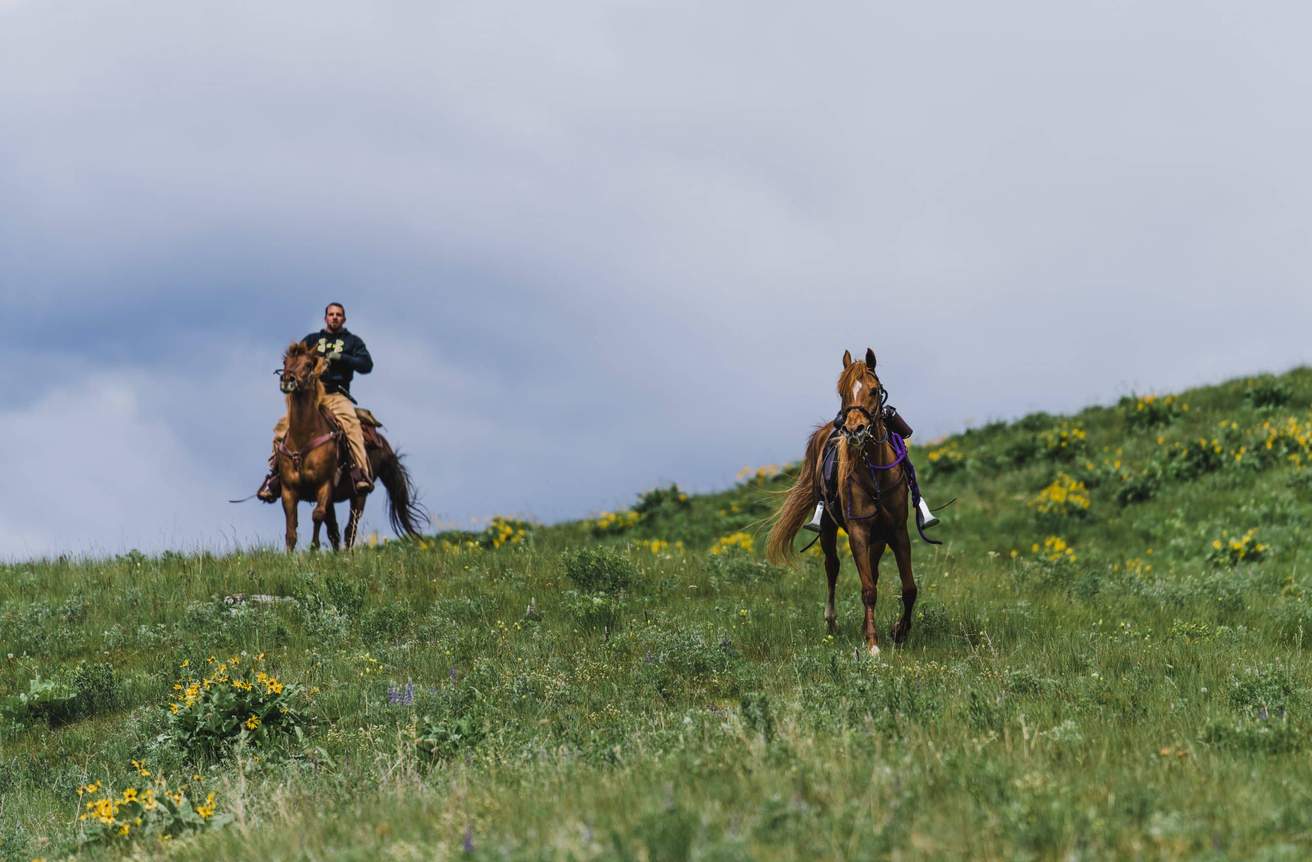 A rider chases after a loose horse on opening day of shed season on the Clearwater WMA