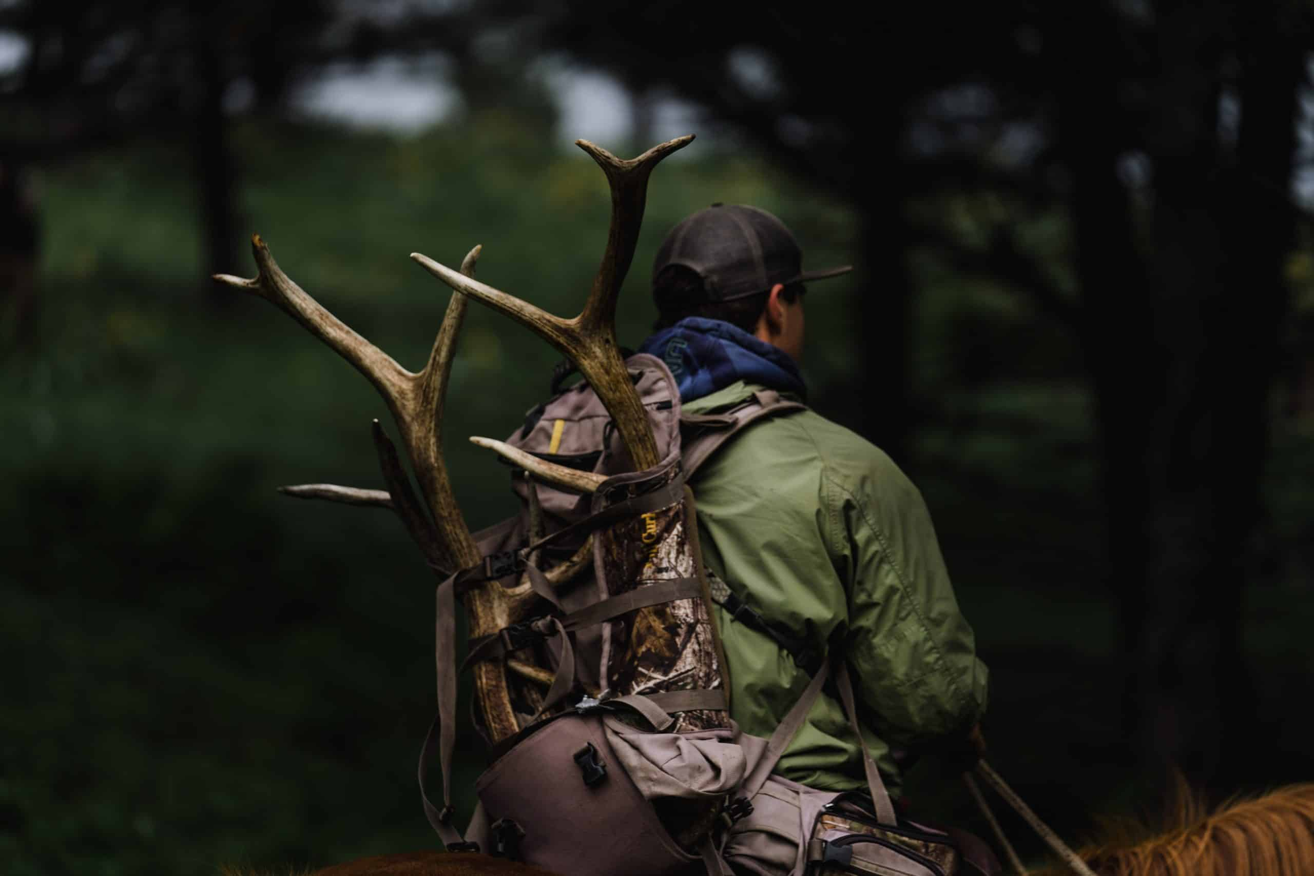 A rider carries off a matching set of elk sheds on the Clearwater WMA