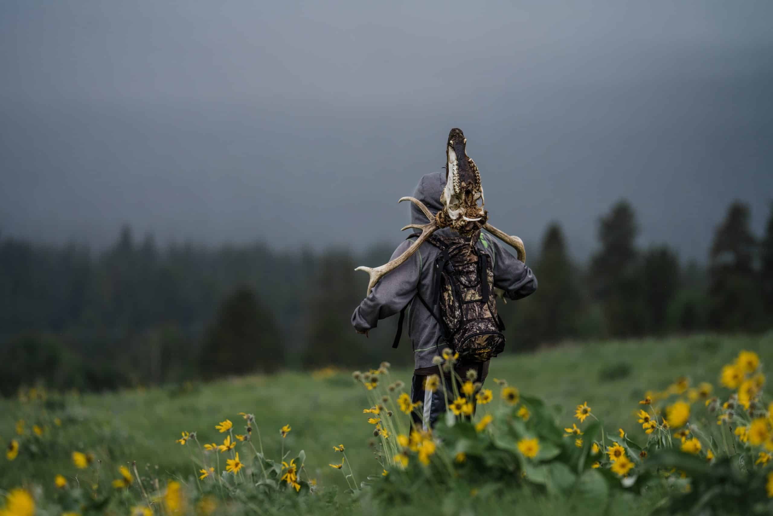 A shed hunter brings home an unlucky elk head that didnt make it through winter.