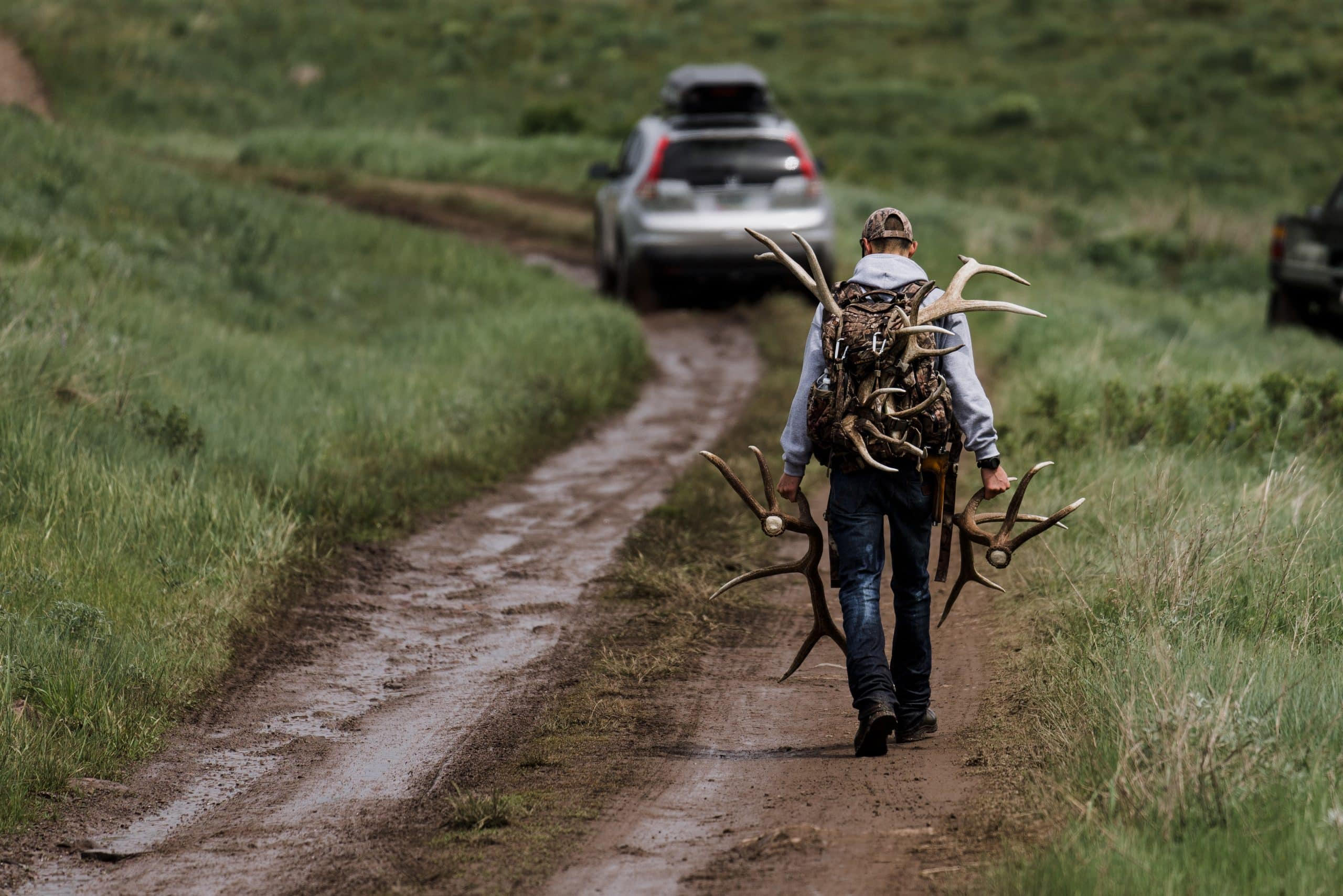 A lone shed hunter hits the jackpot on opening day of shed season on Montana's Clearwater WMA