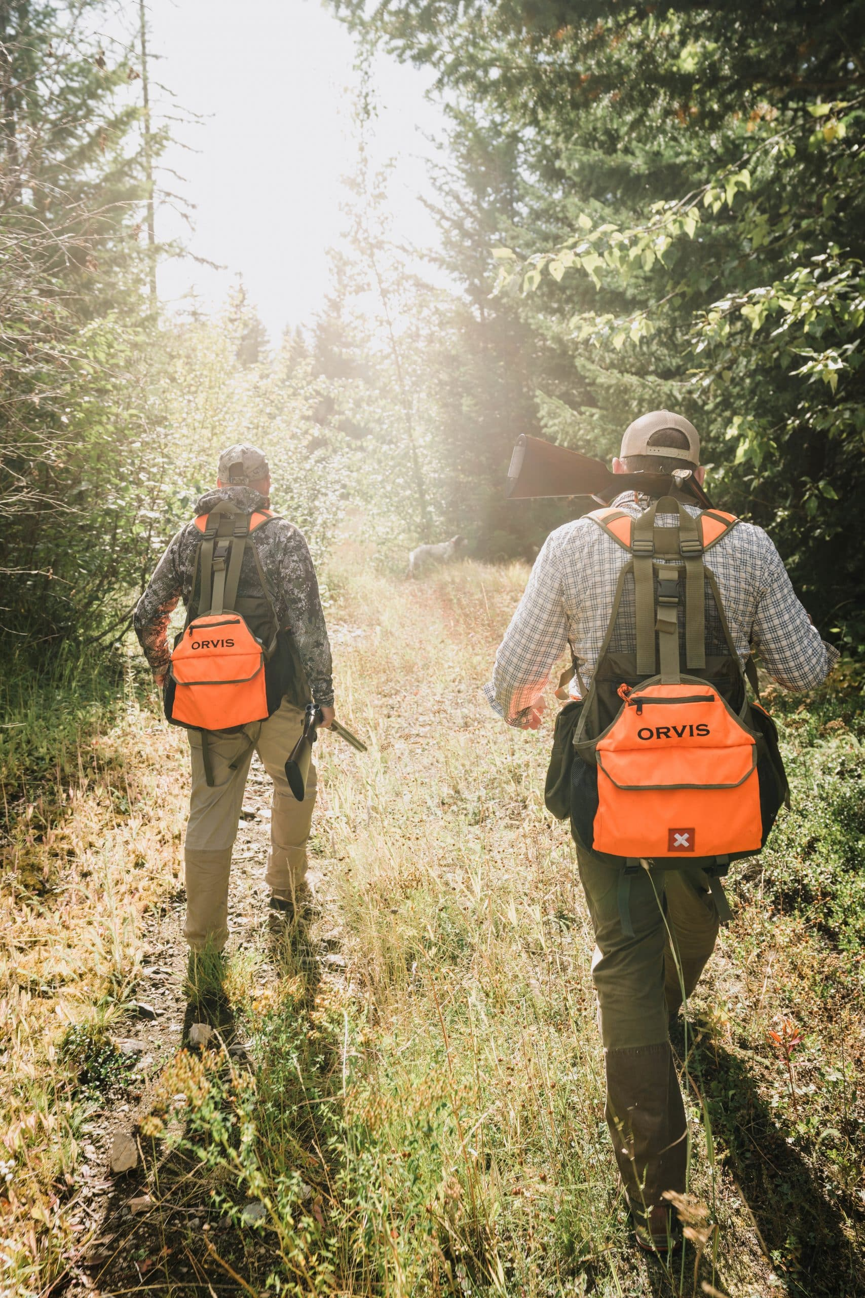 Two grouse hunters walk up a trail in northwest Montana.