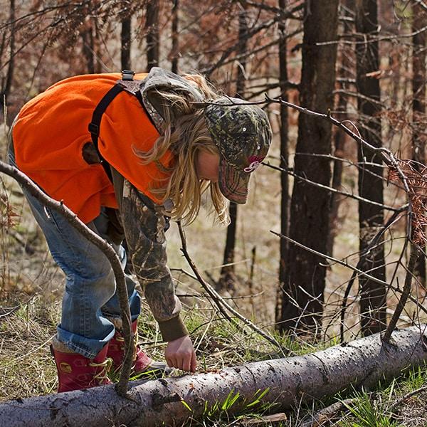briger-fallen-tree.jpg?mtime=20170619153829#asset:2583
