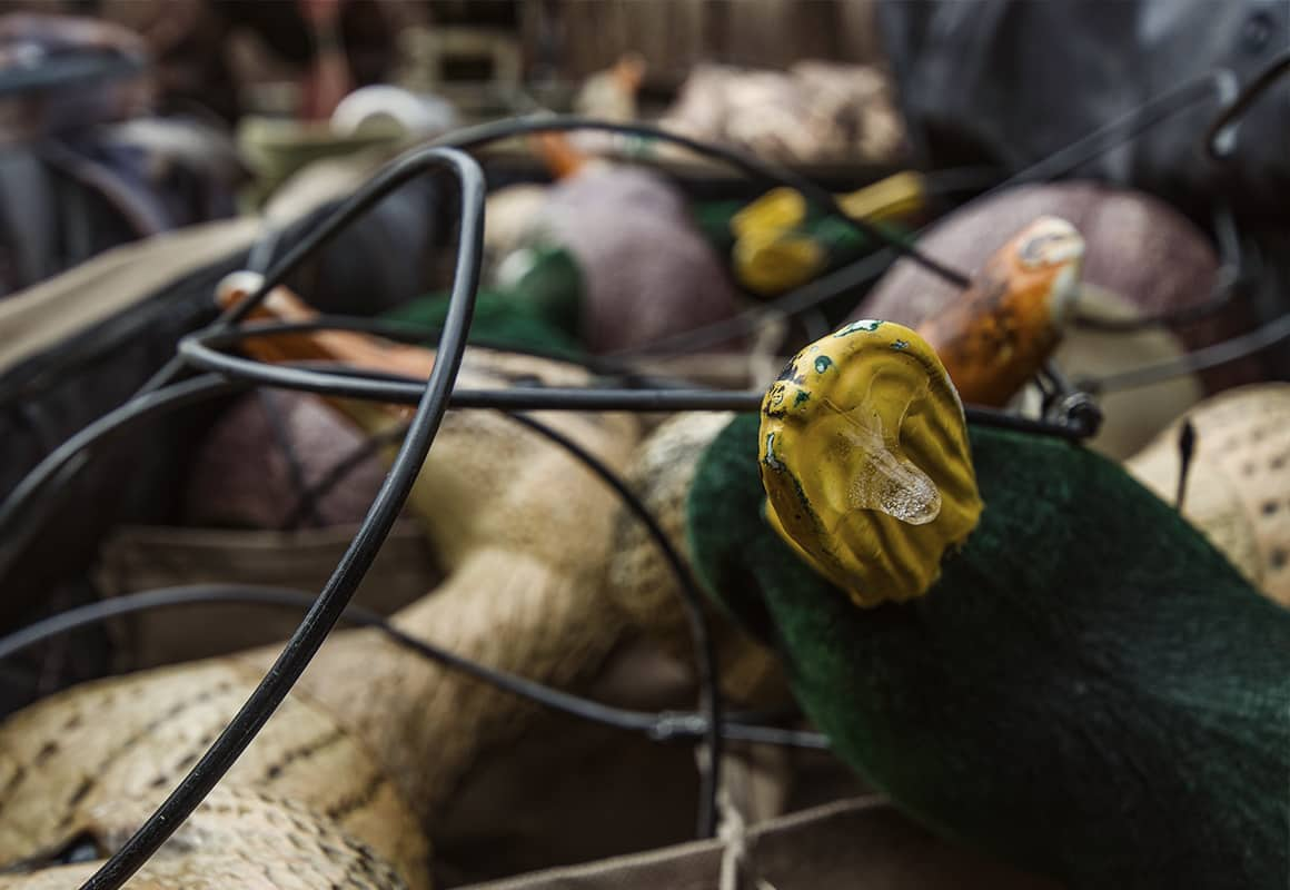 Duck hunting decoys in a boat preparing to be placed in the water.