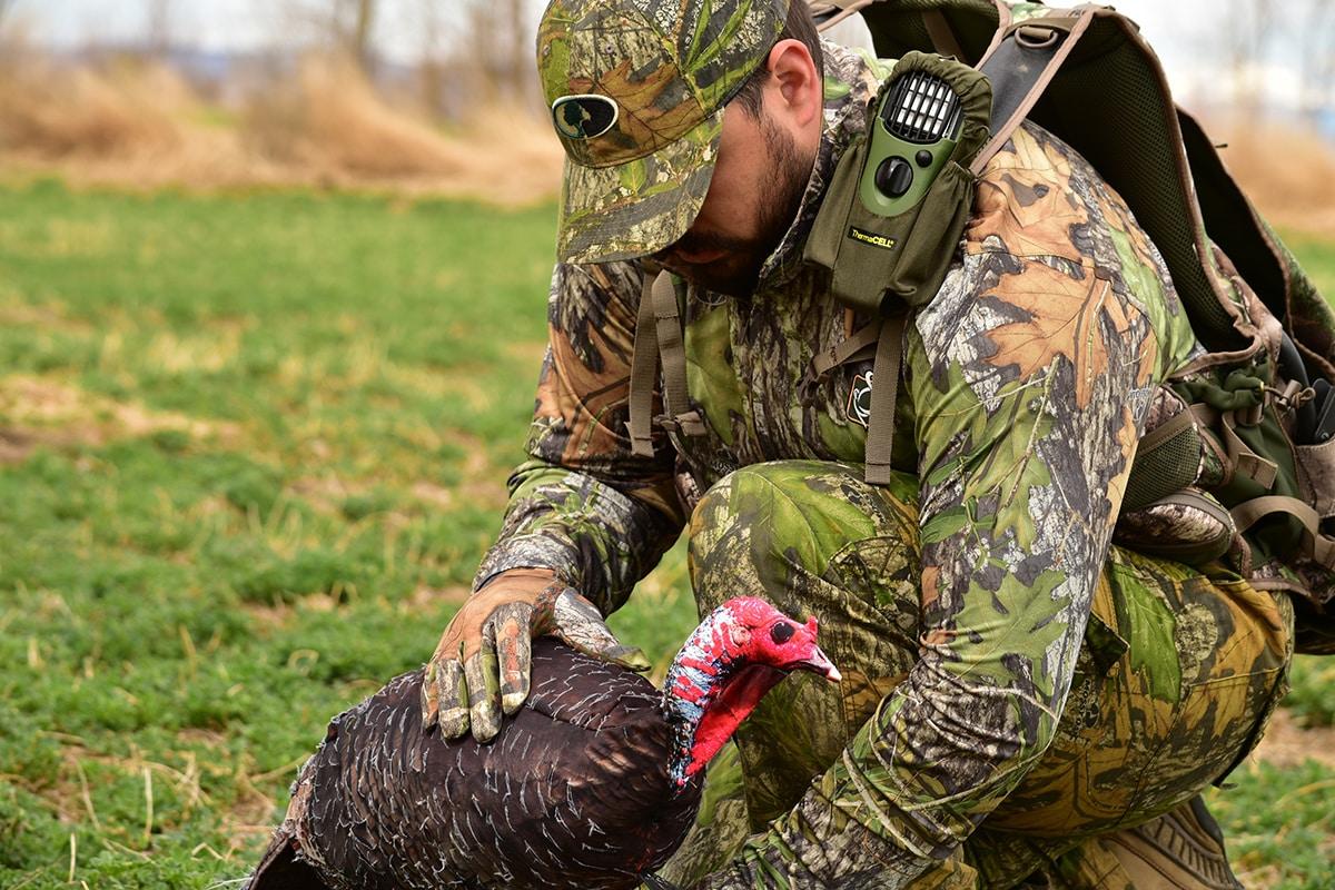Man in camouflage placing a turkey decoy while hunting near Colorado Springs, Colorado.