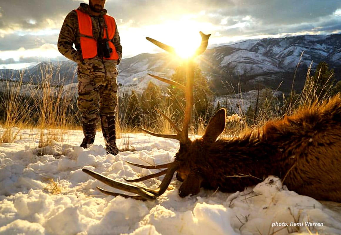 Man dressed in camouflage looks down at a dead elk in snow with sunset, shot while hunting.