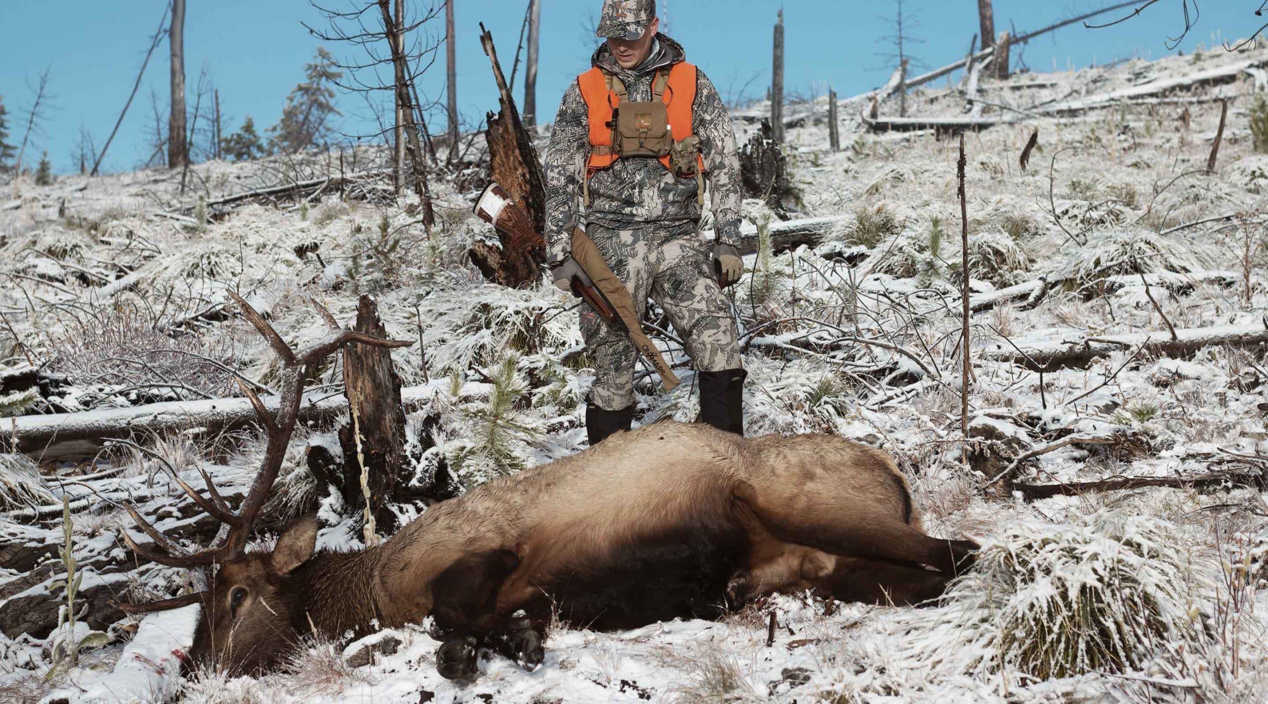 A late-season bull elk shot in the snow in Montana.