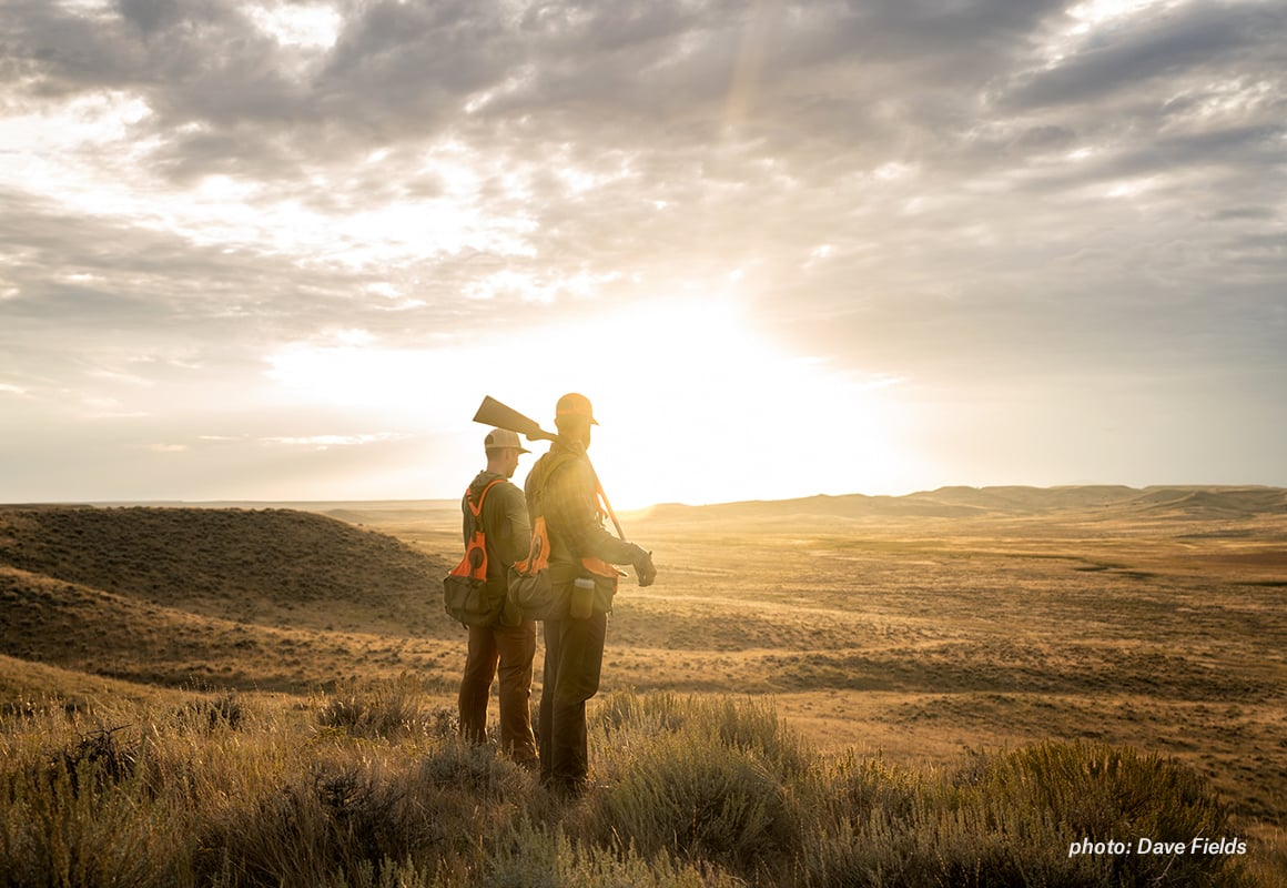 Two upland hunters look over the prairie at sunset