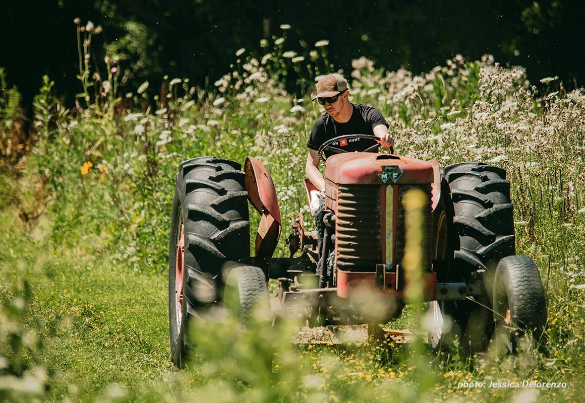 Man on tractor working field foot plot before whitetail deer hunting season.