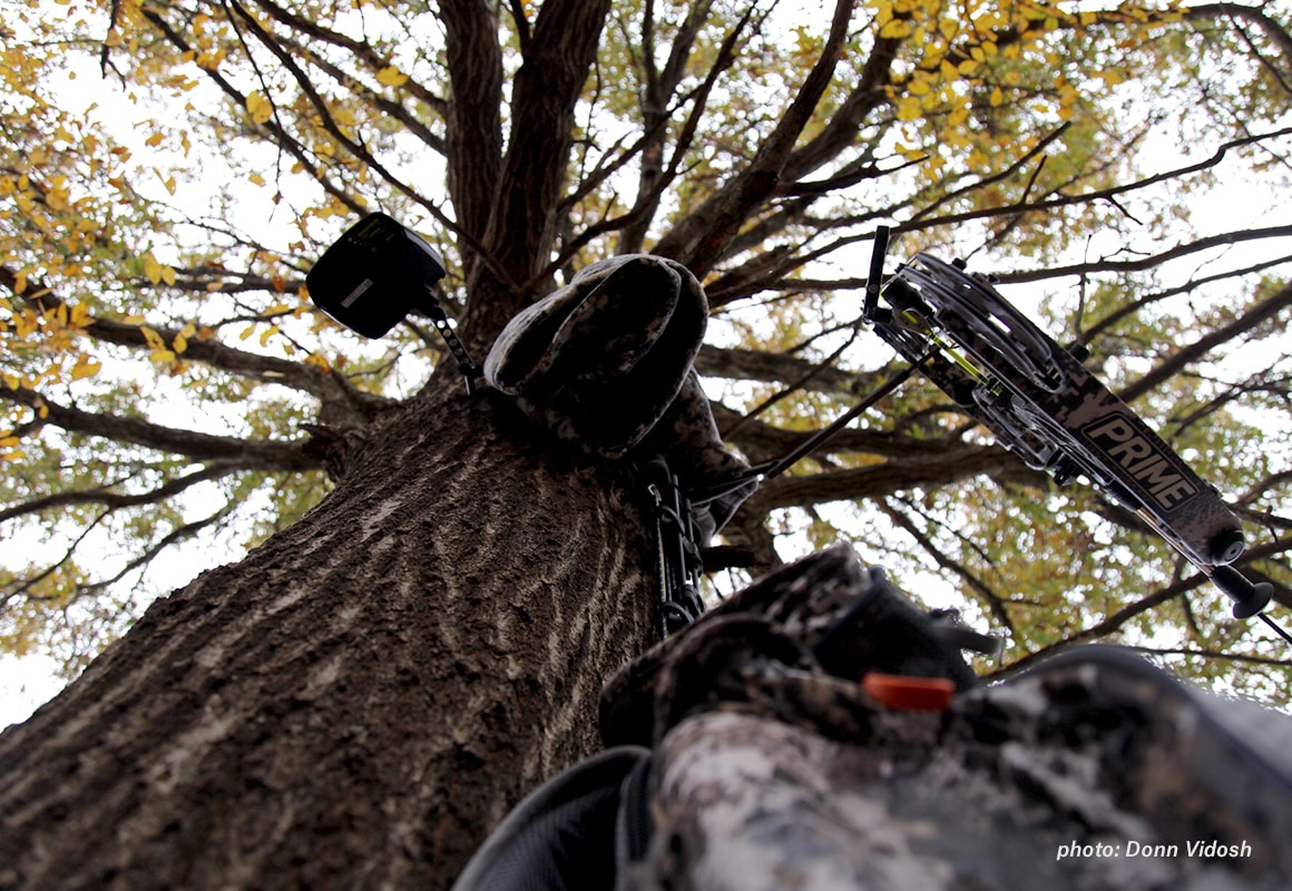 Man climbing into a tree stand with a bow to bowhunt whitetail deer.