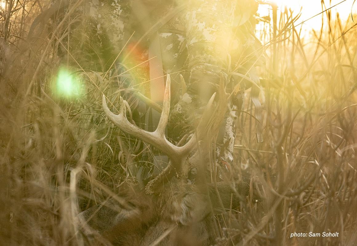 whitetail-body-image-4.jpg?mtime=20190416075203#asset:62575