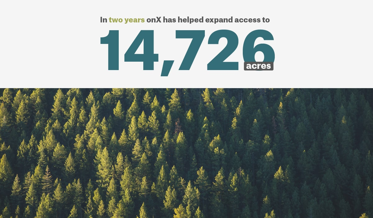 onX expands public lands access. Image of trees in forest.