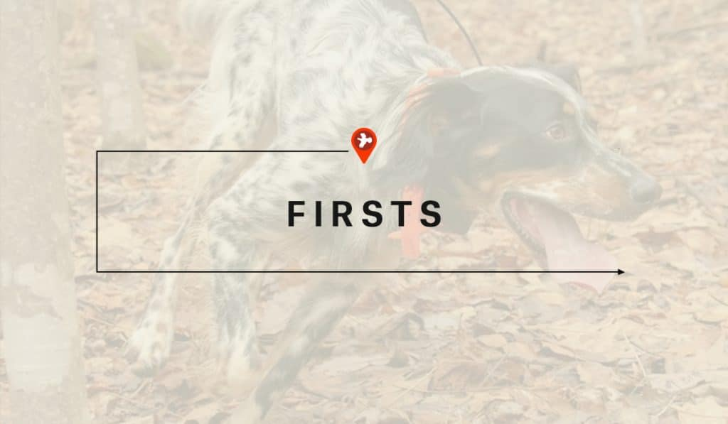 Vignettes from the Field - Our Stories Mapped - onX - Firsts