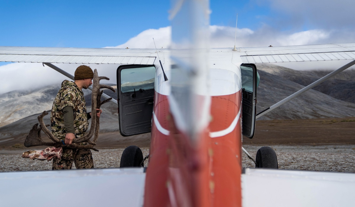 Loading caribou meat and mount into an Alaskan bush plane after a successful hunt.