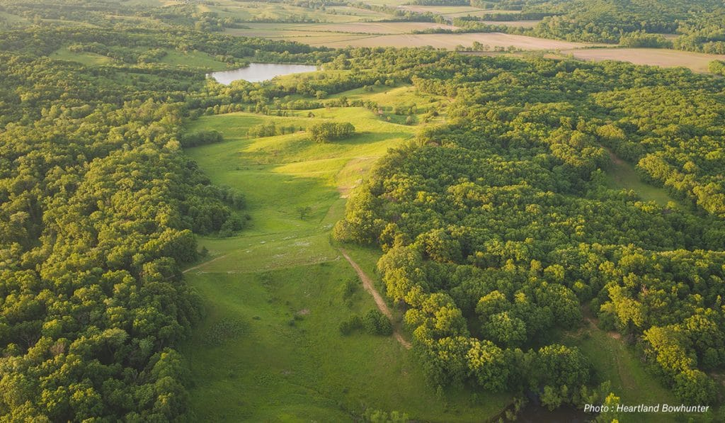 What Makes Good Hunting Lease Land - onX