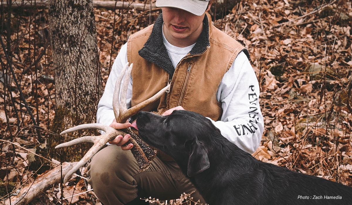 How Dogs Hunt Sheds - onX Hunt