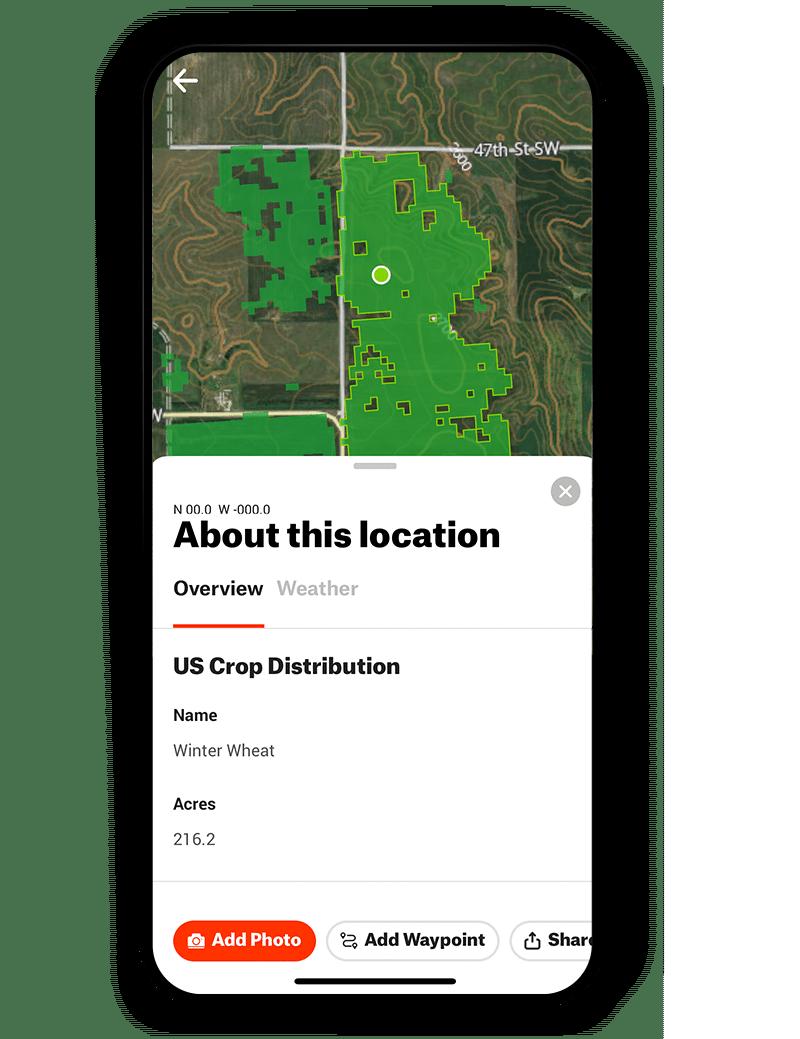 winter wheat crop data layer
