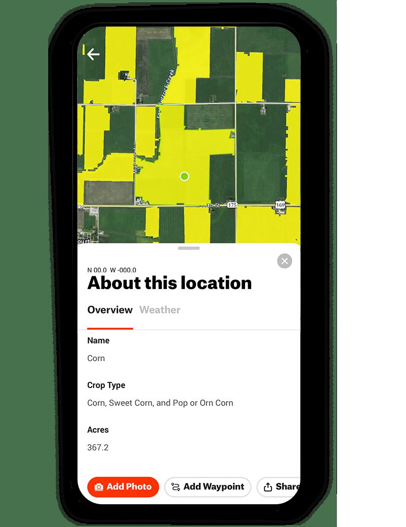 corn crop data layer