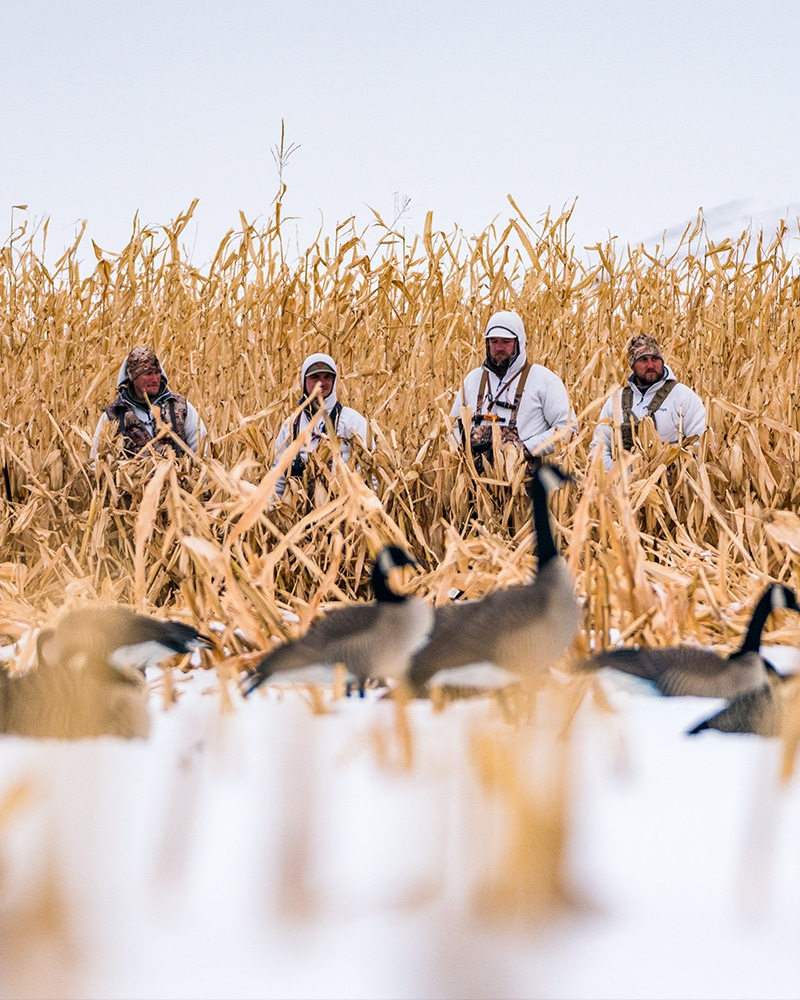 crop data layers for waterfowl hunting