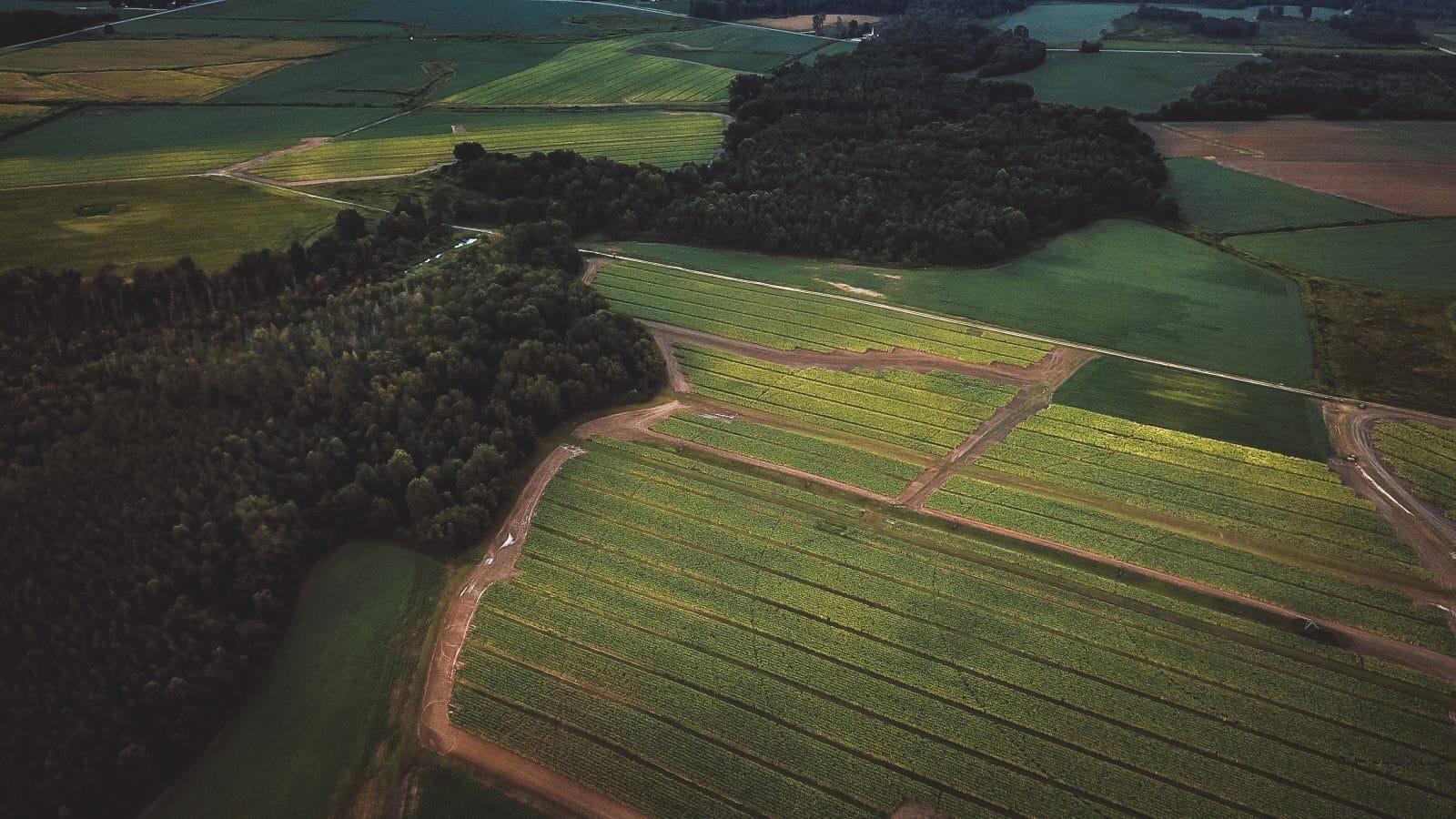 onx crop layers
