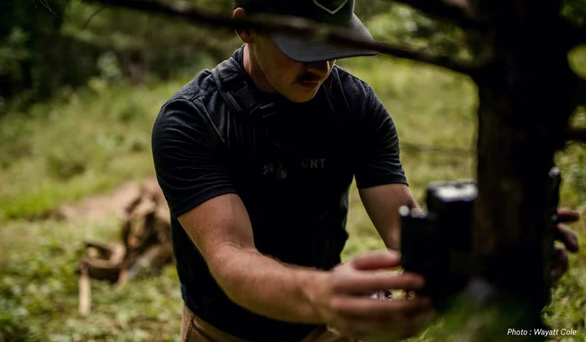 onx June Whitetail Report - Summer Whitetail Scouting