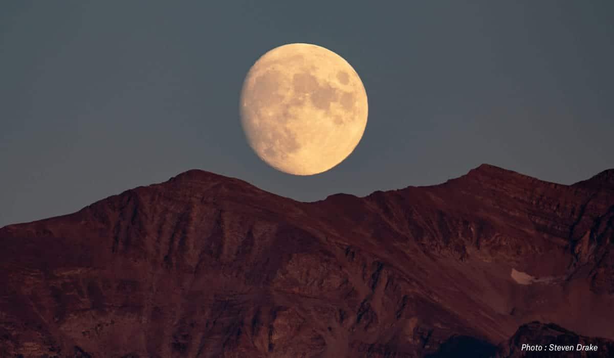 The Rut, The Moon, The Heat