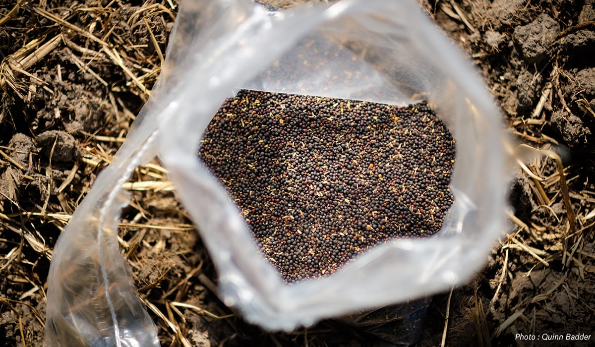 Plant Fall Food Plots with onX Hunt