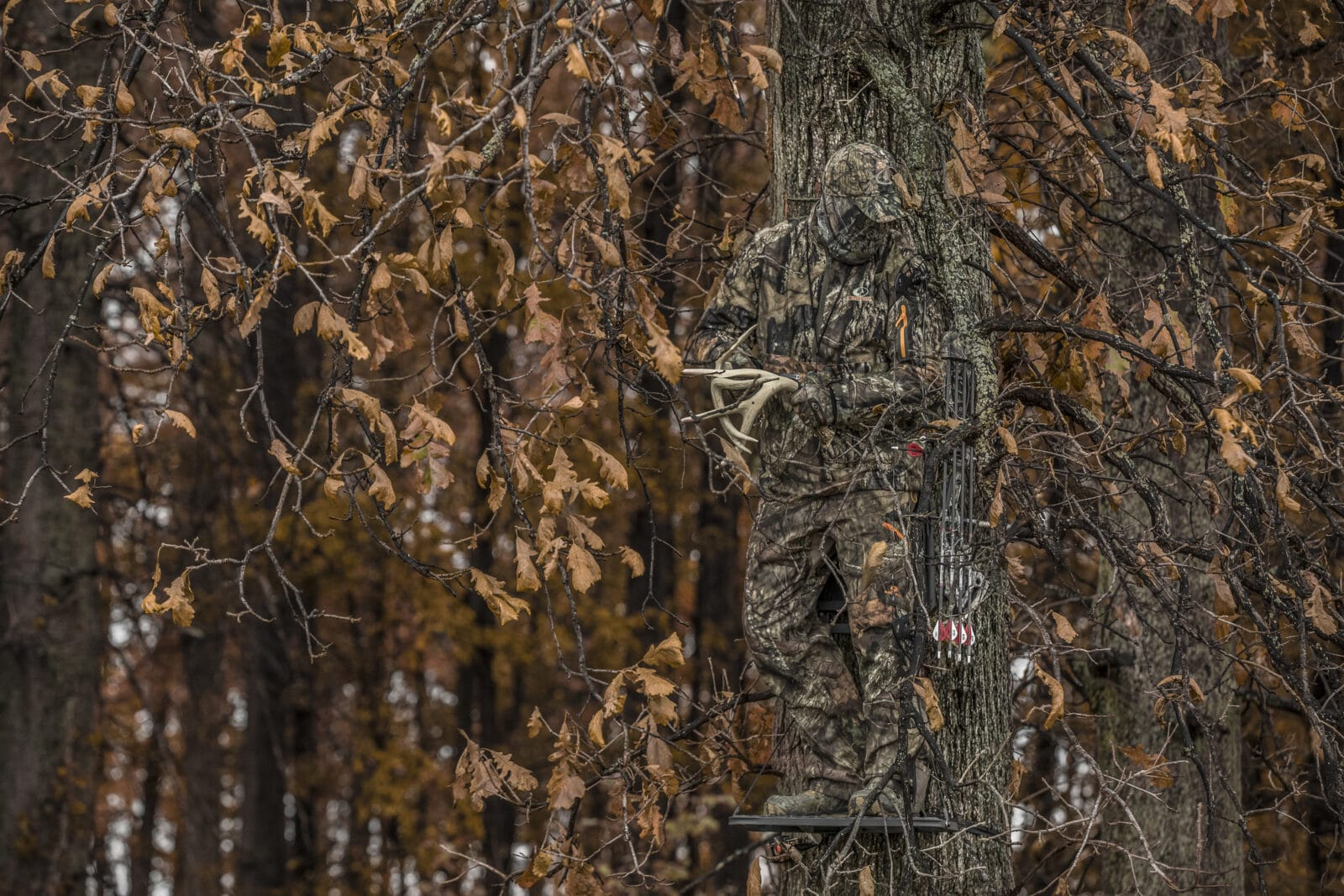 A hunter in a treestand
