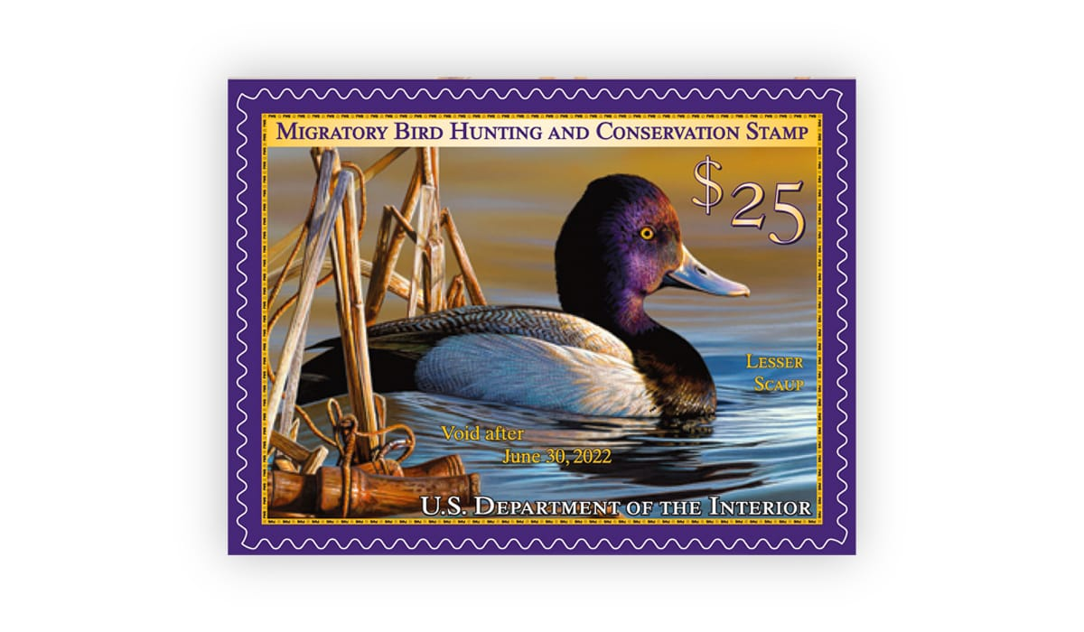 The Federal Duck Stamp